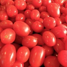 """Mini Roma """"TomBons"""" Tomaat per 250 gram"""