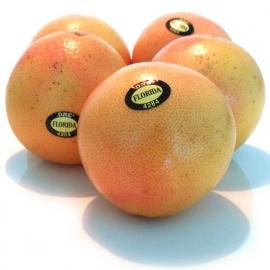Rode Grapefruit per 5 stuks