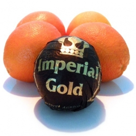 Navel Sinaasappel per 5 stuks
