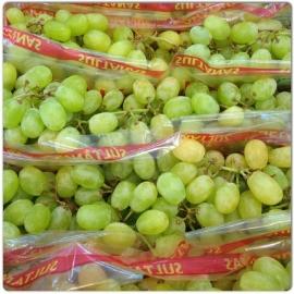 Druif Pitloos Wit verpakt per 500 gram
