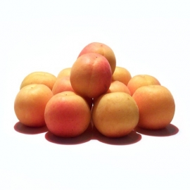 Abrikoos verpakt per 500 gram
