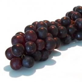 Druif Pitloos Blauw/Rood verpakt per  500 gram