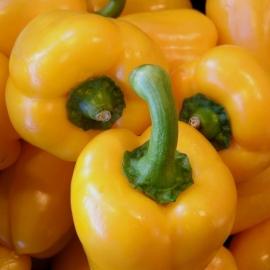 Paprika Geel per stuk