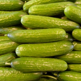 Snack Komkommer per 500 gram ( 4-5 stuks )