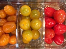 Snoep Tomaten MIX verpakt per 500 gram