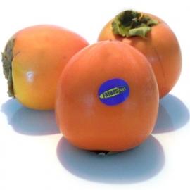 Kaki Fruit XL per 3 stuks