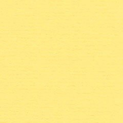 Papicolor Daffodil Yellow A5 200 grms 928
