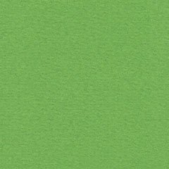 Papicolor Grass Green A4 200 grms 907