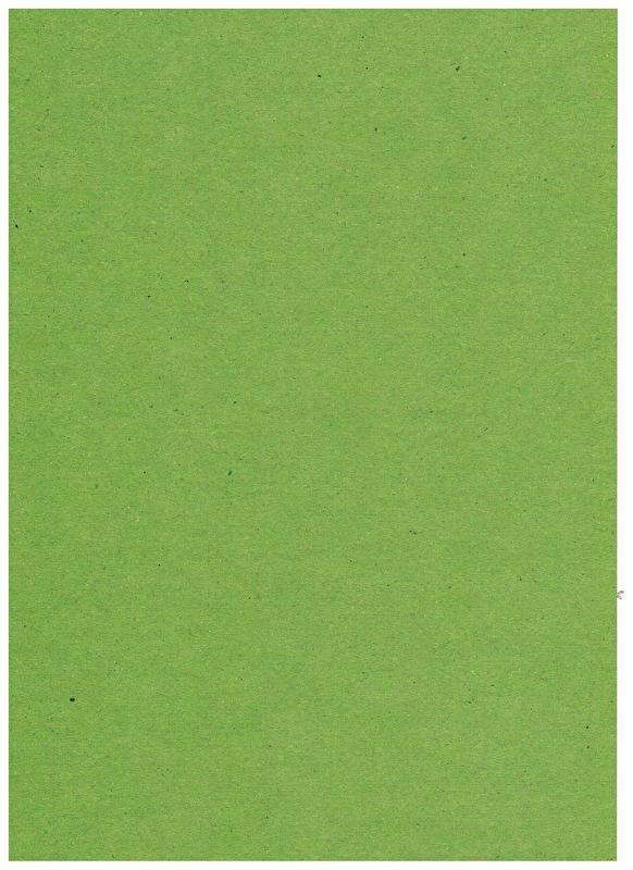 Emerald Kraftpapiere ( moosgrün) A4 29,7 bis 21 cm 220 Gramm