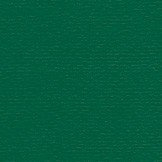 Papicolor Dennengroen A4 200 grams kleur 950