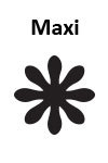 Maxi Margerite