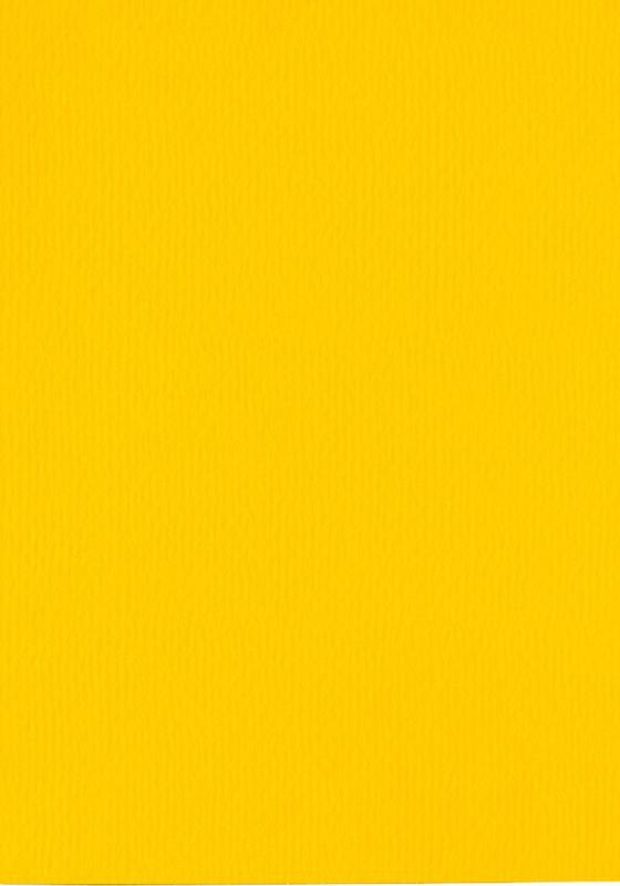 Papicolor Buttercup Yellow A5 200 grms 910