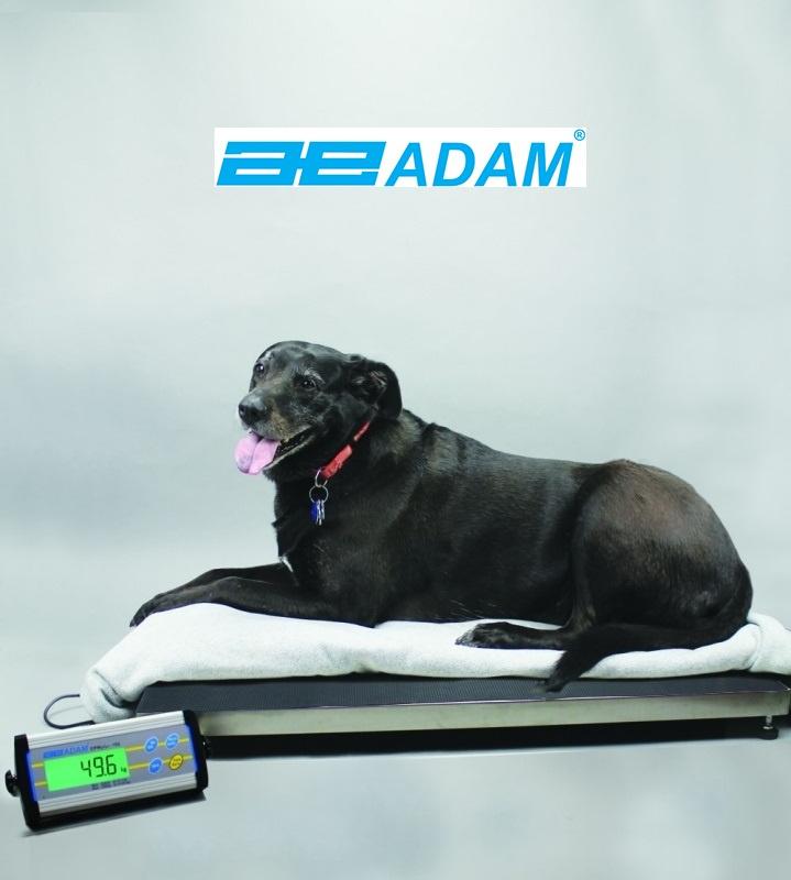 ADAM CPWplus 150 L
