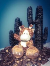 Geboorte Giraf