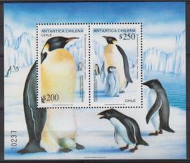 Chili Koning pinguïn blok