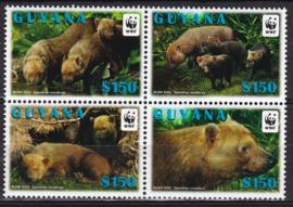 Guyana boshonden