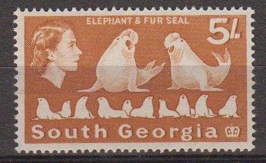 South Georgie