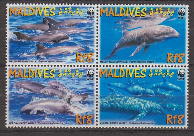 Maldives WWF in blok van 4