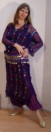 Saidi netjurk PAARS met multicolor plastic muntjes - PURPLE transparent saidi bellydance dress with plastic coins