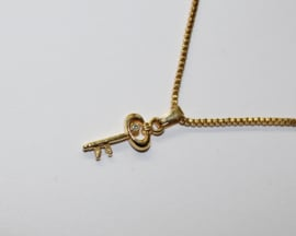 Sleutel naar je Hart GOUD kleurig + ketting - Key to your Heart GOLD colored + chain