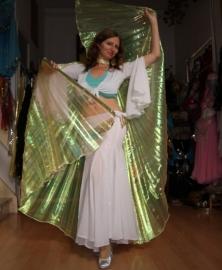 Isiswings parelmoer met GROENE glans regenboog transparant - Isis wings iridiscent GREEN rainbow transparent - Ailes d'Isis VERT arc en ciel
