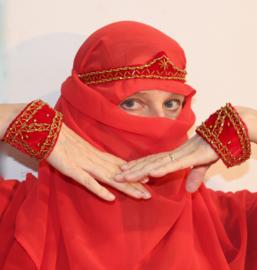 Cleopatra setje 3-delig : ROOD met GOUD fluwelen hoofdbandje en 2 armbandjes - 3-piece Cleopatra headband + 2 wristbands velvet RED with GOLD