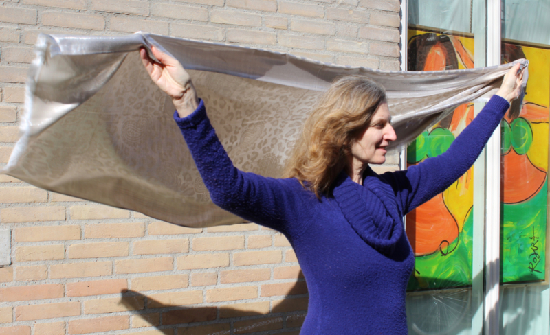 Glanzende ZILVER BEIGE sjaal, rechthoekig met bloem en kashmir motief - 72 cm x 190 cm - Shawl SILVER BEIGE, rectangular, with flower and kashmir design