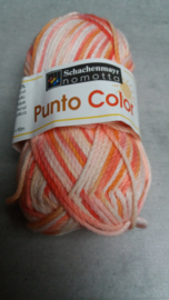 Schachemayer Punto Color 87