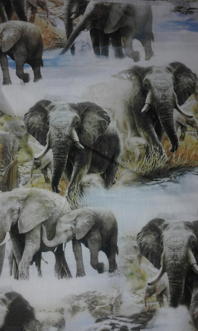 jungle dieren olifanten