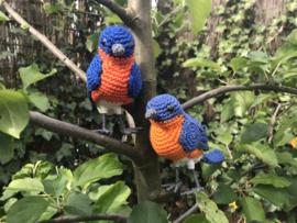 Eastern bluebird crochetpattern.