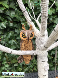 The Long-eared Owl