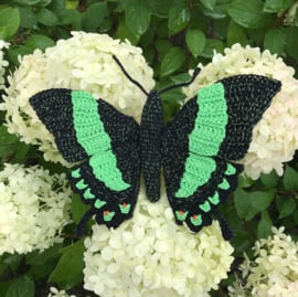 3 vlinders voor 10 euro actie