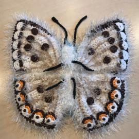 Bleekblauwtje Vlinder