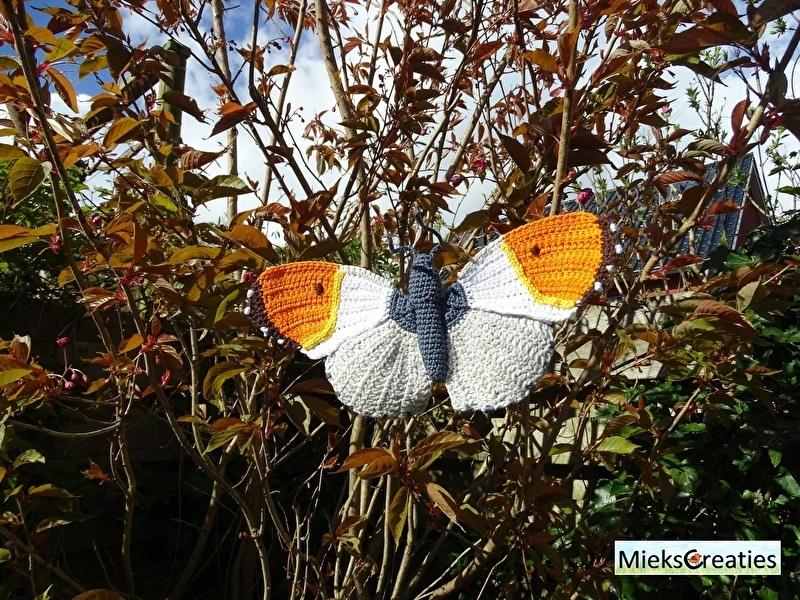 Haakpatroon Vlinder het Oranje Tipje