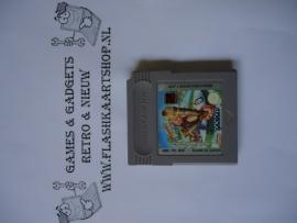 Dennis The Menace Nintendo Gameboy GB / Color / GBC / Advance / GBA (B.5.1)
