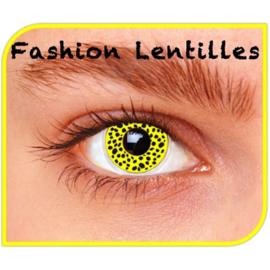 Party lens yellow cheetah
