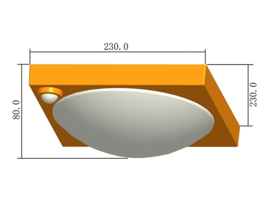 LED plafonniere met bewegingssensor - Type 70A (3 maanden garantie)