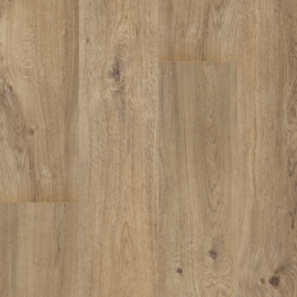 Floorify Rigid Vinyl XL-Plank Teddy Bear F102