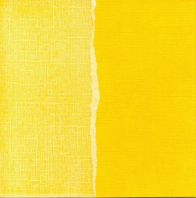 Tulip (geel) GX-YS020