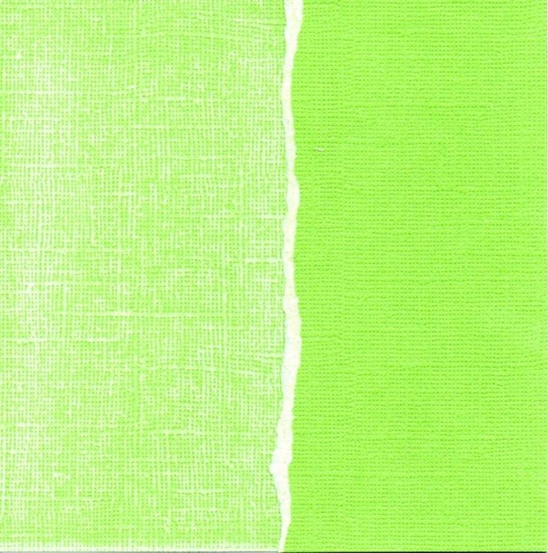 Kiwi (groen) GX-LG030-12