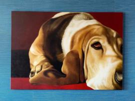 Basset Hound schilderij