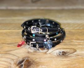Zwart met roze, zwart met blauw halsband kleine hond
