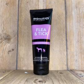 Animology | Shampoo's