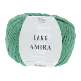 Amira 017