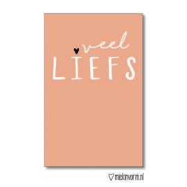 Mini kaartje Veel Liefs |  Miek in Vorm