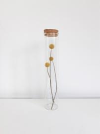 Glazen Jar cilinder met een Gele bloem