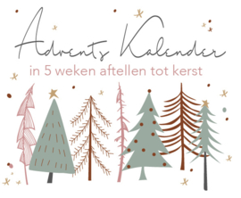 Adventsweek 1: 23 nov t/m 29 nov