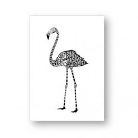 Kaart Flamingo | Jots