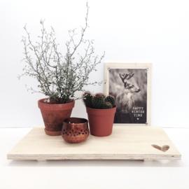 Houten plank / Tray  rechthoekig | Dots lifestyle