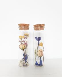 Glazen Jar met droogbloemen